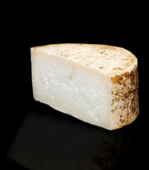queso cabra curado queseria campo escobalitos